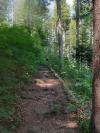 Wanderurlaub_Alpenueberquerung_2021_2_012