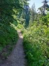 Wanderurlaub_Alpenueberquerung_2021_2_014