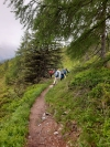 Wanderurlaub_Alpenueberquerung_2021_4_013