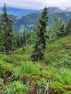 Wanderurlaub_Alpenueberquerung_2021_4_020