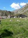 Wanderurlaub_Alpenueberquerung_2021_6_016